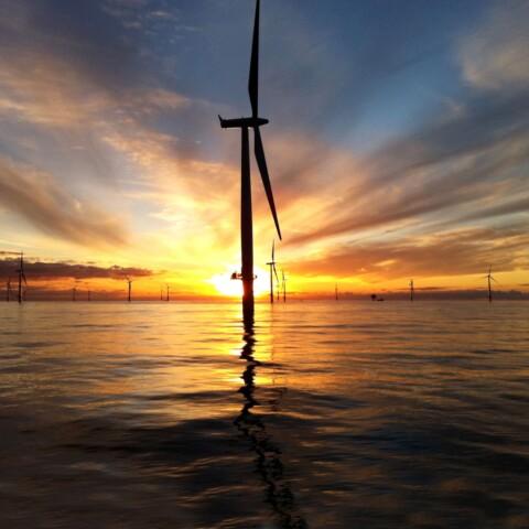 VBI mahnt: Klimasofortprogramm muss umsetzbar sein