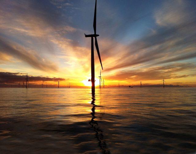 VBI präsentiert englischsprachigen Leitfaden Erneuerbare Energien